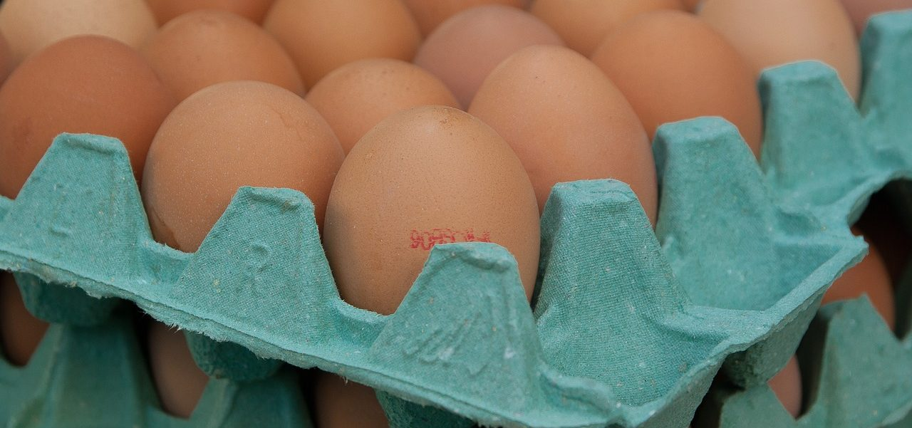 Braune Eier Bodenhaltung