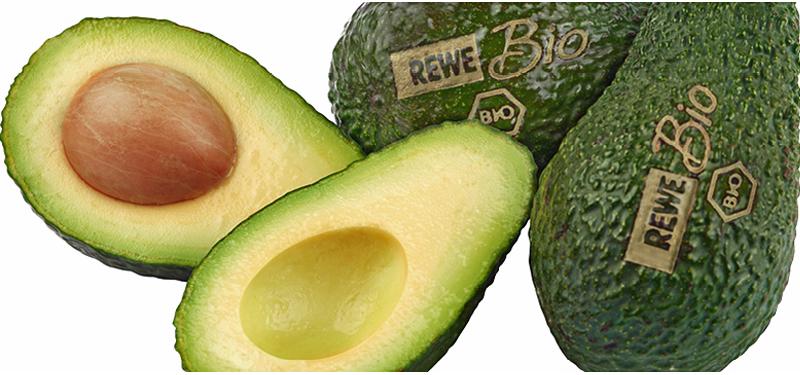 Rewe testet Licht-Label bei Bio-Gemüse