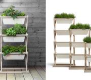 Urban Gardening: Gemüseanbau auf dem Balkon – Kräuterregal