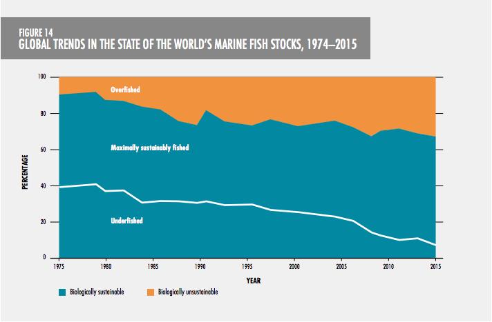 Überfischung: Grafik