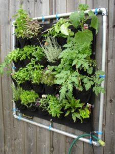 Kräutergarten auf dem Balkon, vertical gardening