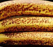 SirPlus gegen Lebensmittelverschwendung, dunkle Bananen