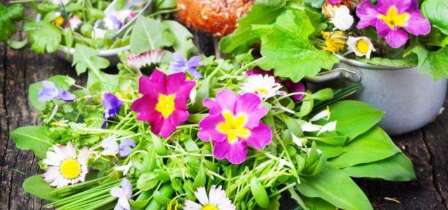 Essbare Blüten auf dem Salat