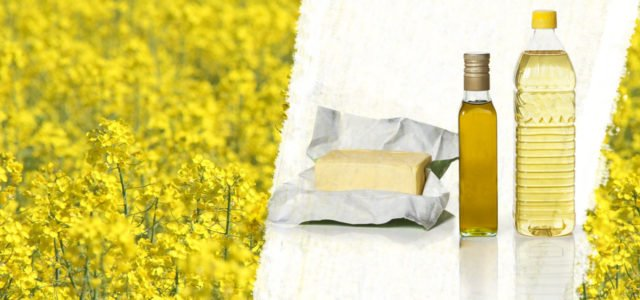 Speiseöle und Fette: Welches Öl ist gesund?