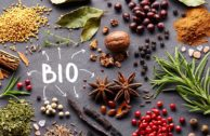 Bio Gewürze kaufen: die wichtigsten Marken und Online-Shops