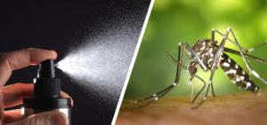 Mückenspray selber machen