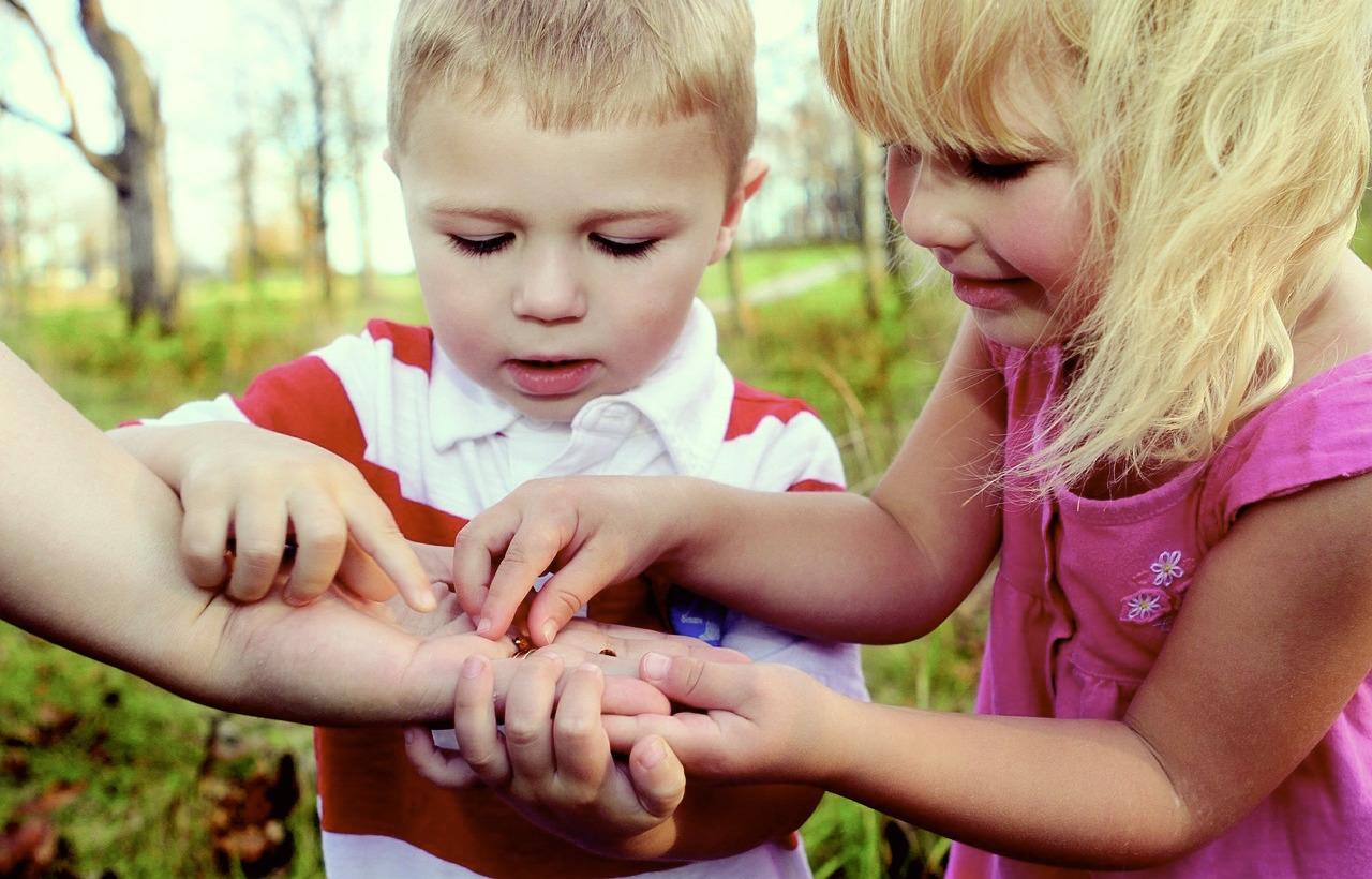 Natur entdecken: Erlebnispädagogik zum Geburtstag