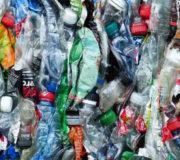 Plastikflaschen Klimabilanz Einweg Mehrweg