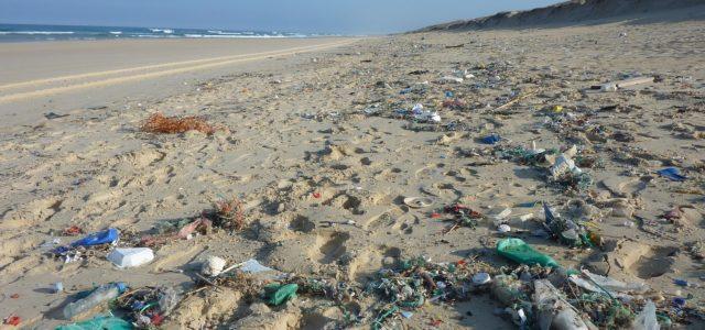 Plastikmüll UN-Ozeankonferenz