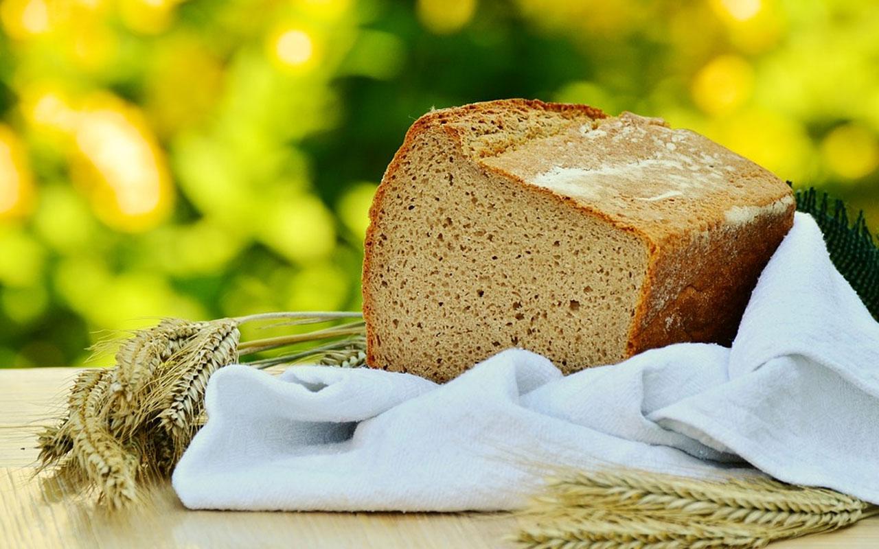 Selbst gebackenes Brot schlägt gekauftes preislich wie auch geschmacklich um Längen