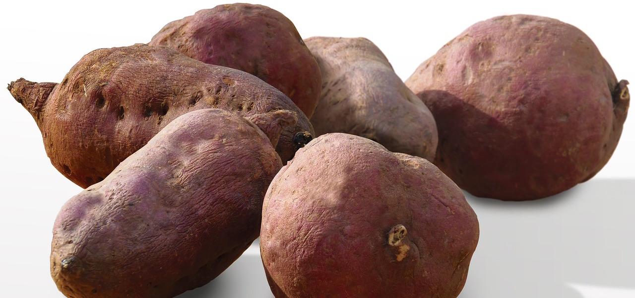 Eigenschaften von Süßkartoffeln zum Abnehmen