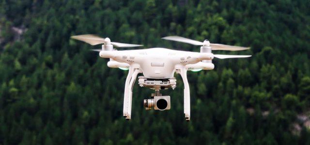 Drohne Bäume pflanzen