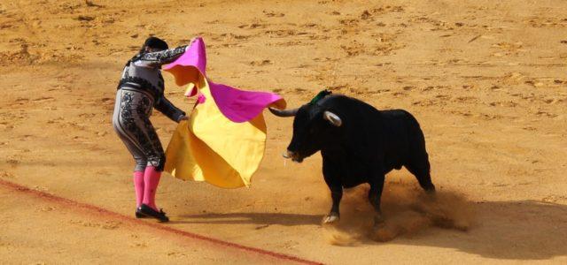 Stierkampf Gesetz Mallorca Balearische Inseln