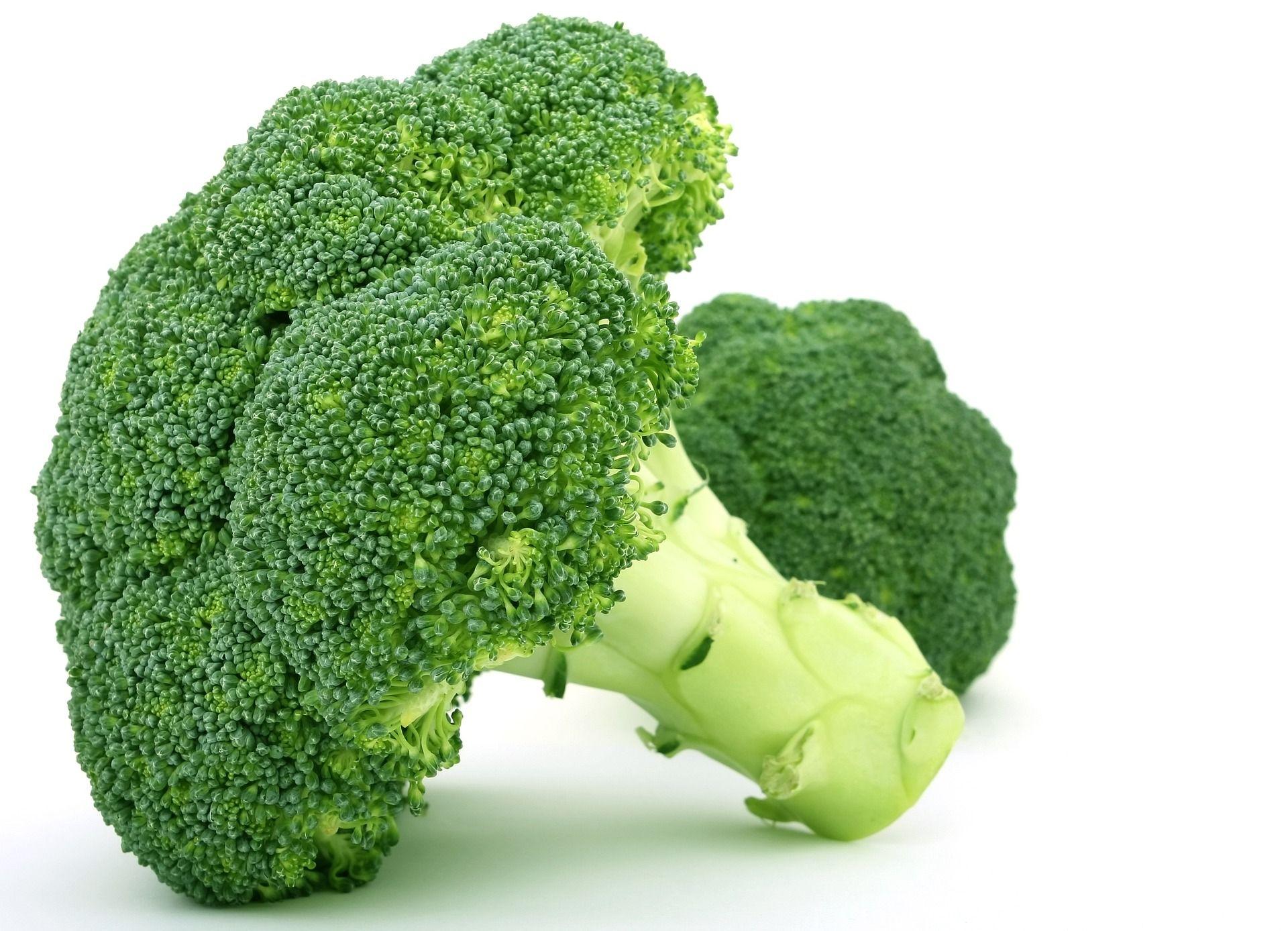 Brokkoli enthält viel Eisen