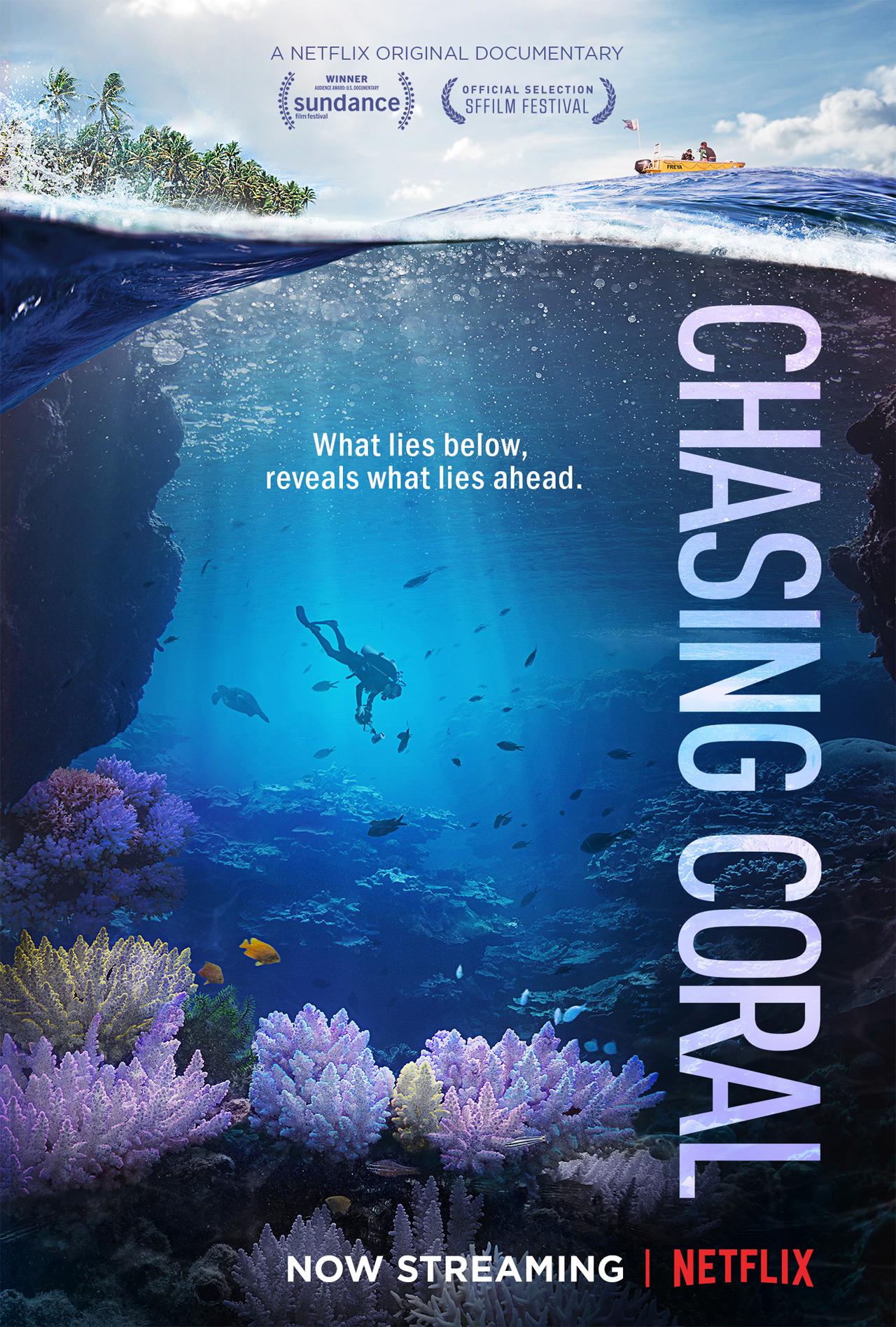 "Doku ""Chasing Coral"" auf Netflix"