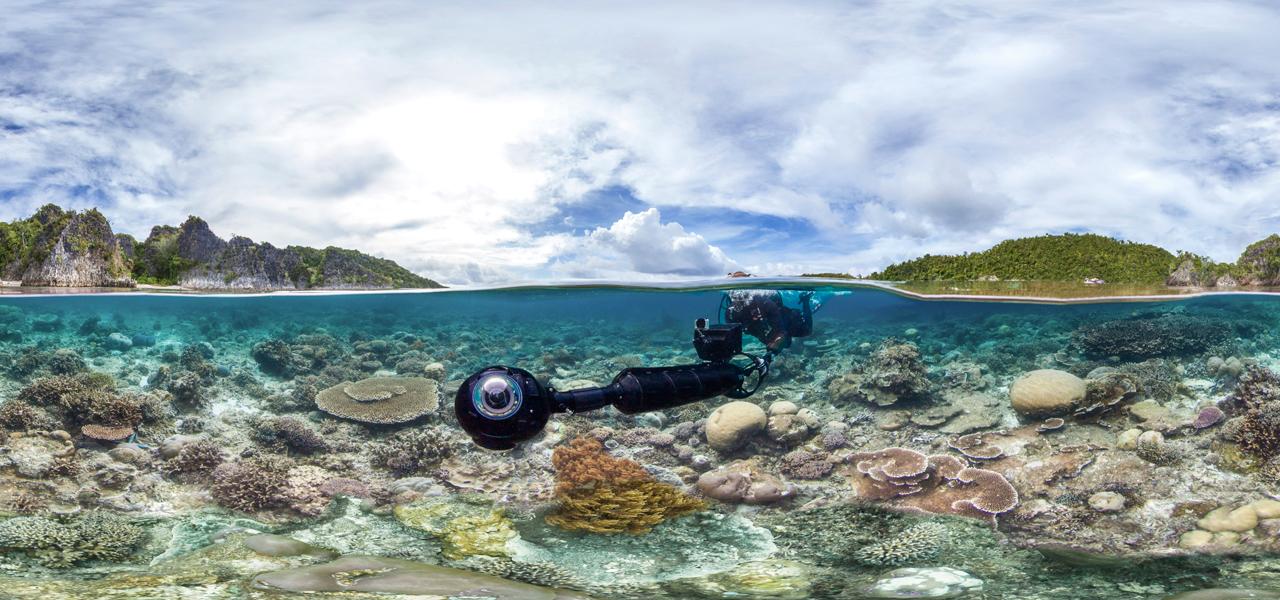 Chasing Coral auf Netflix: Doku über Korallenbleiche