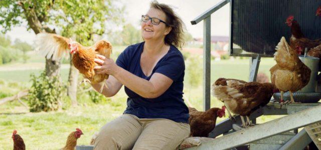 Bank Punk Bettina Atwood: Das Fuldaer Landei. Tagsüber laufen Hühner frei. Übernachtet wird aber im mobilen Hühnerstall.