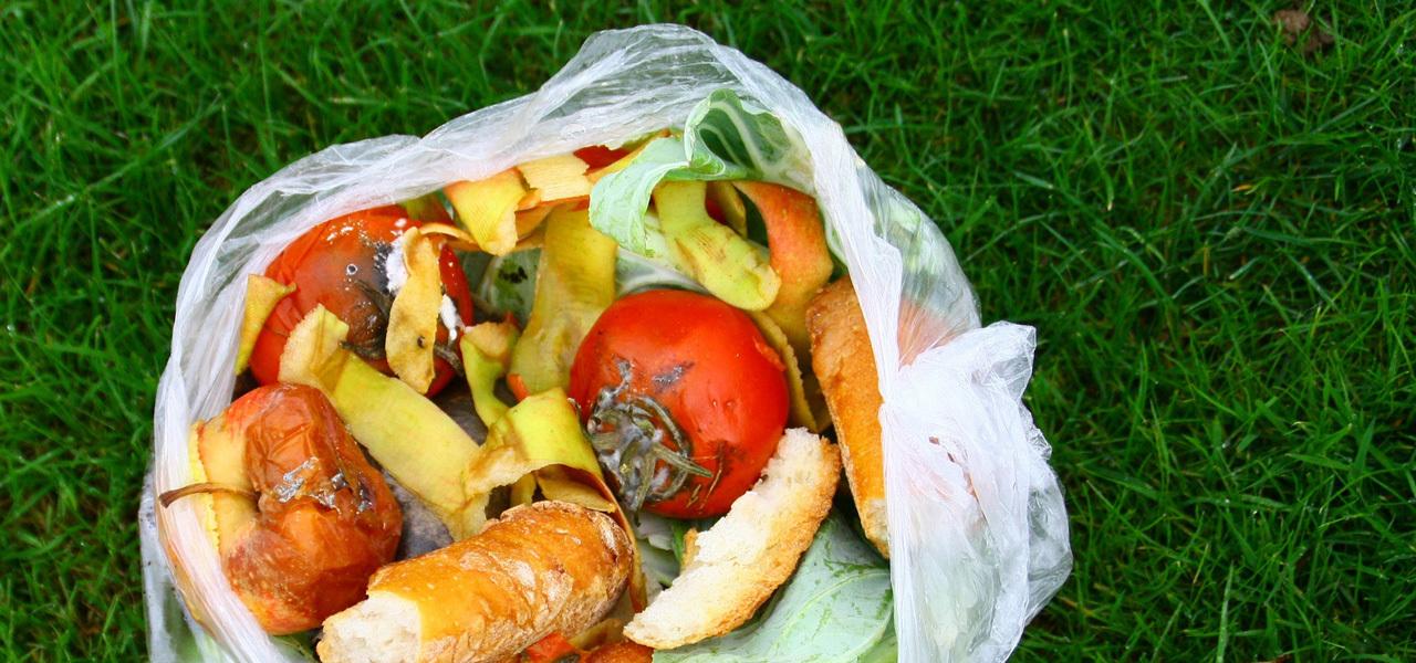 Die Bio-Plastiktüte landet trotzdem im Restmüll.