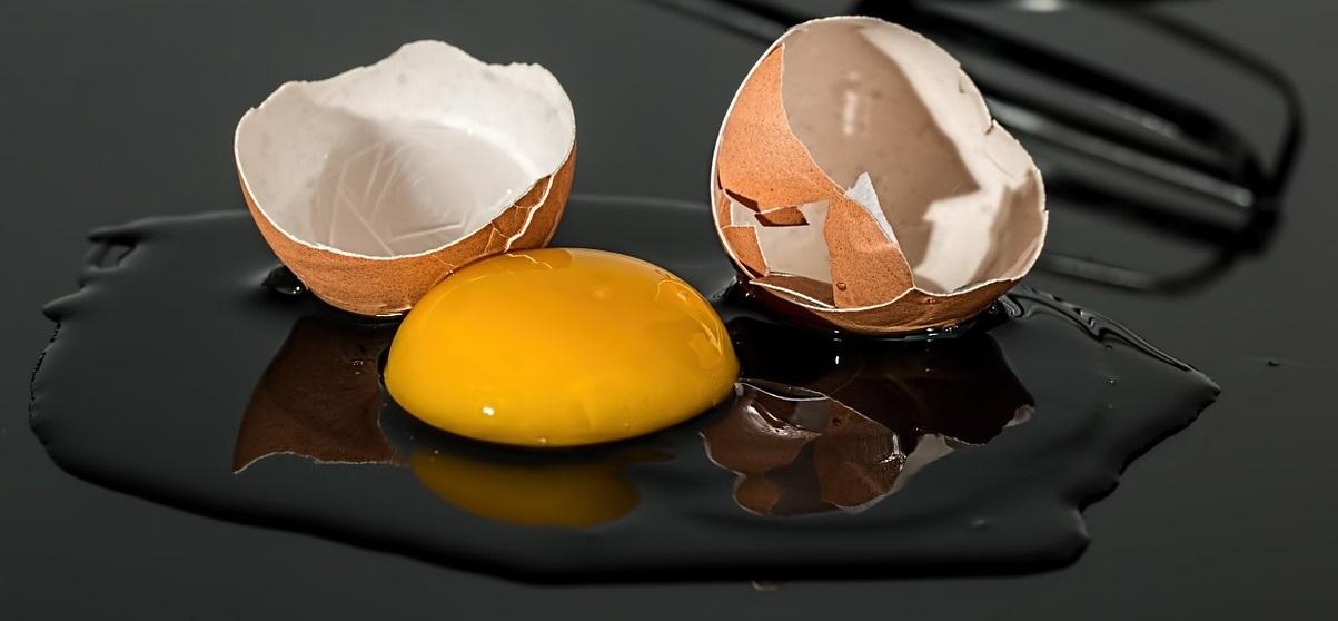 gekochtes ei noch gut