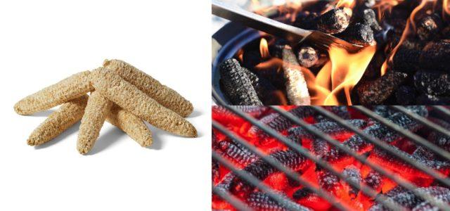 Maister Grillkolben aus Maisspindeln