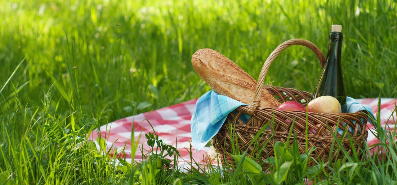 Picknick Picknickkorb Picknickdecke