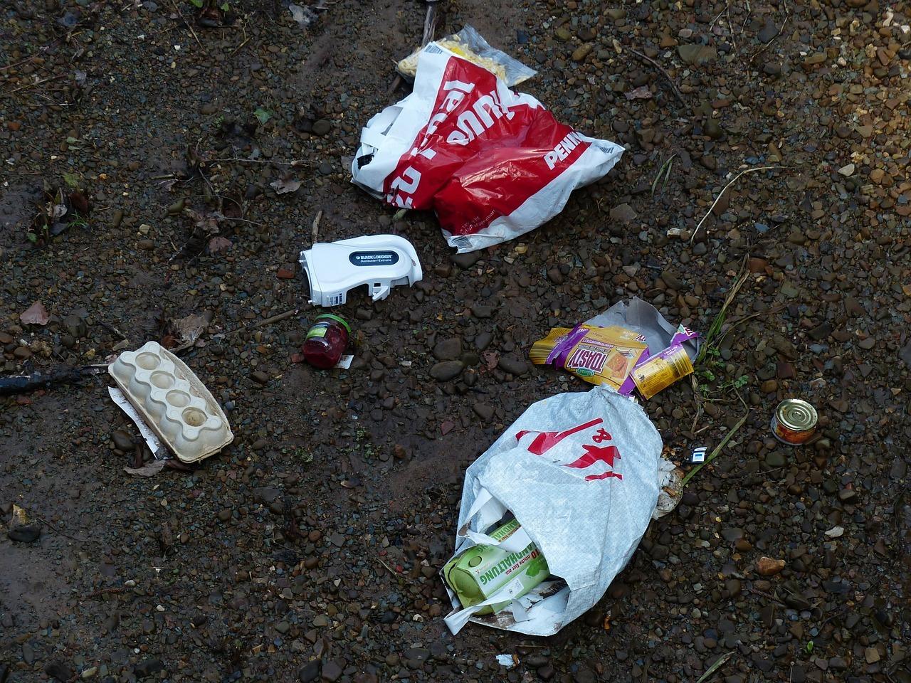 Plastikmüll verschmutzt Wälder, Flüsse und die Meere.