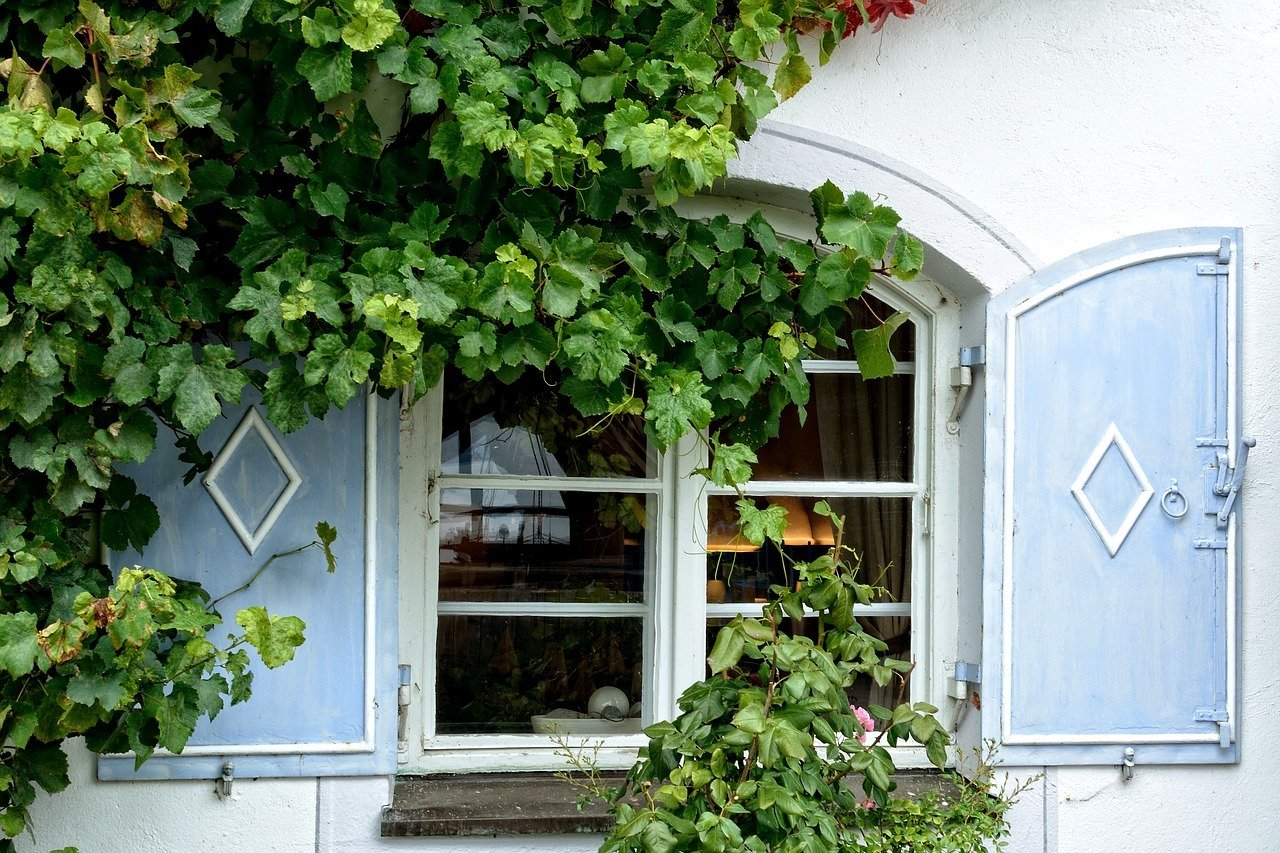 bienenfreundliche pflanzen die besten ideen f r garten und balkon. Black Bedroom Furniture Sets. Home Design Ideas