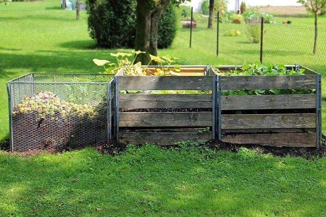 Bio-Tonne oder Kompost?