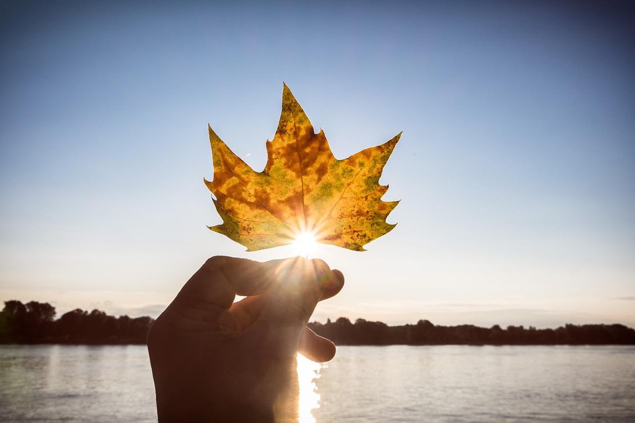Der Blick für die schönen Momente vertreibt die Herbstdepression.