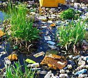 Plastik Müll Fluss