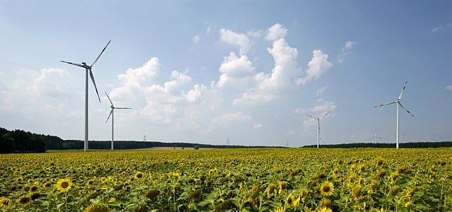 In der Lausitz stehen die beiden Windparks Buchhain I und Buchhain II. Seit Anfang 2012 erzeugen die sieben 150 Meter hohen Windenergieanlagen Ökostrom, der den jährlichen Bedarf von knapp 10.000 Haushalten deckt.