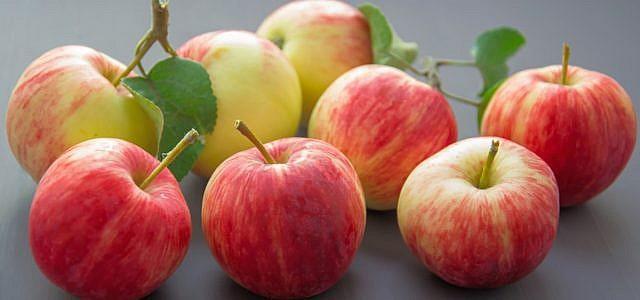 Apfelrezepte kannst du fast das ganze Jahr über kochen, da Äpfel sich gut lagern lassen.