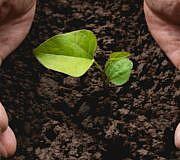 Bio Welt ernähren Landwirtschaft