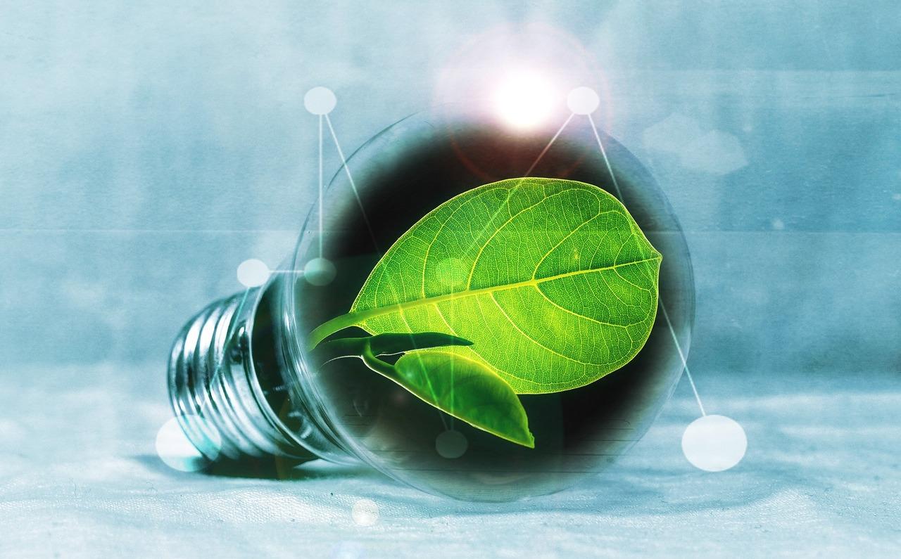 Die nachhaltige Idee für die Geldanlage