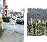 Weihnachtsbaum, Tannenbaum,