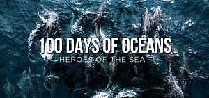 Film: 100 Days of Oceans - Crowdfunding