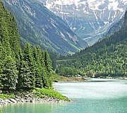 Alpen, Bäume,