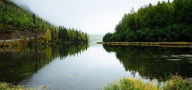 Landschaft, Fluss, See