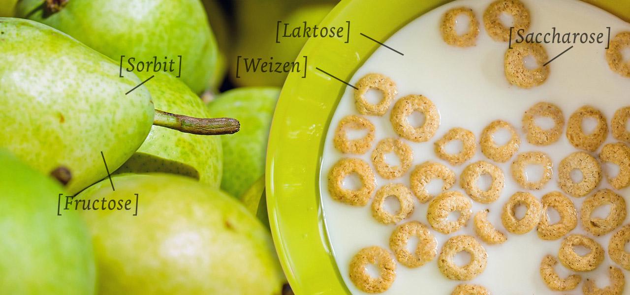 Nahrungsmittelunverträglichkeit Die 7 Wichtigsten Allergenen