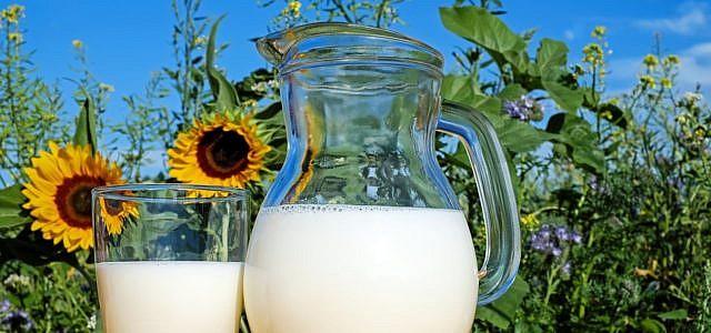 Milchkefir selber machen ist einfach und gesund.