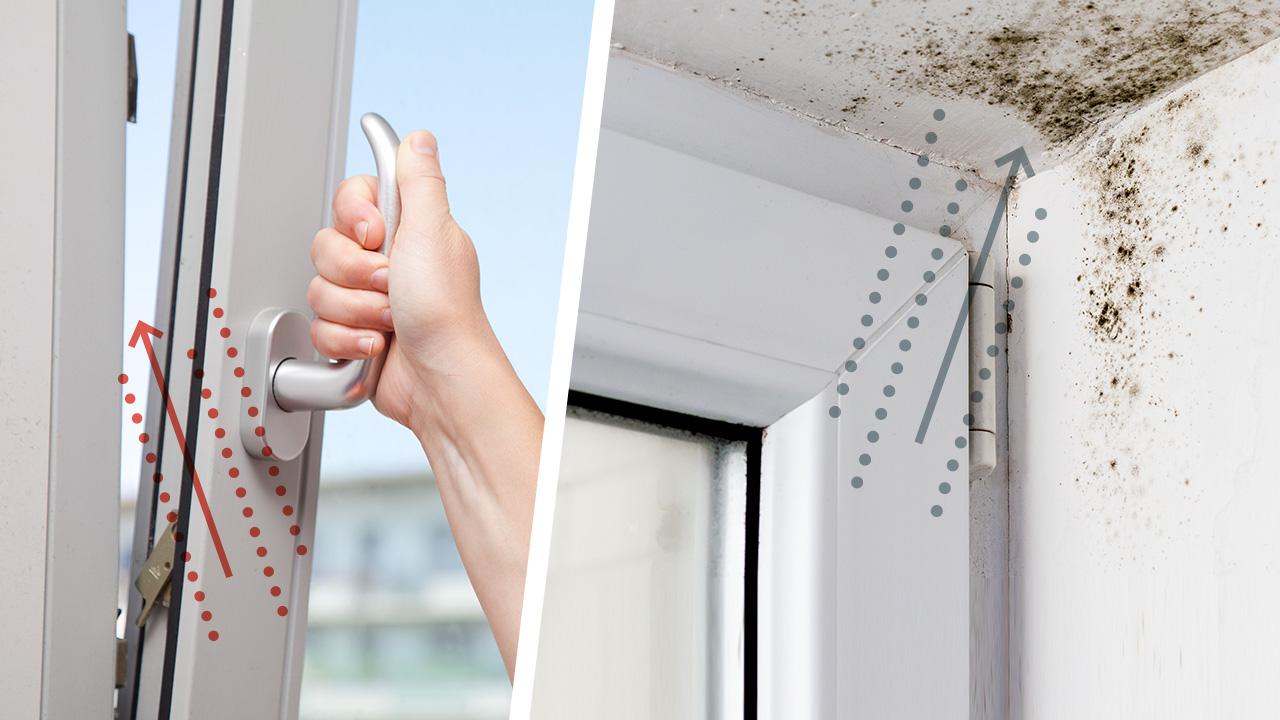 Richtig lüften: 19 Tipps – Schimmel in der Wohnung vermeiden  UTOPIA