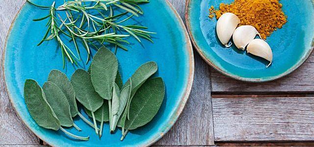 Diese Heilpflanzen sind natürliche pflanzliche Schmerzmittel und Antibiotika