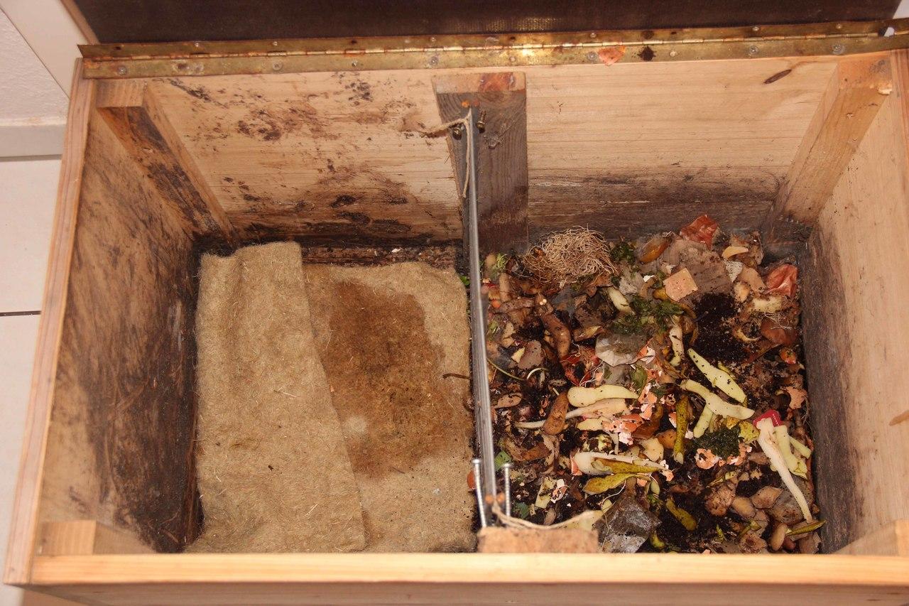 wurmkiste: selber bauen - einfach kompostieren - utopia.de