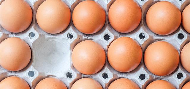 Öko-Test: veganes Ei-Ersatzpulver