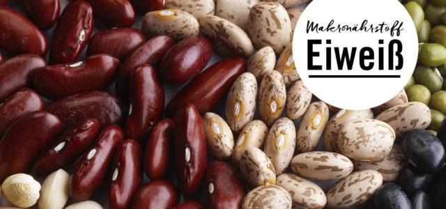 Eiweiß zählt zu den drei Makronährstoffen.