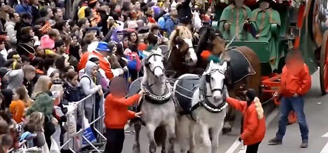 Karneval Fasching Karrnevalumzug Pferde Peta