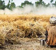 Landgrabbing Farmer auf dem Feld