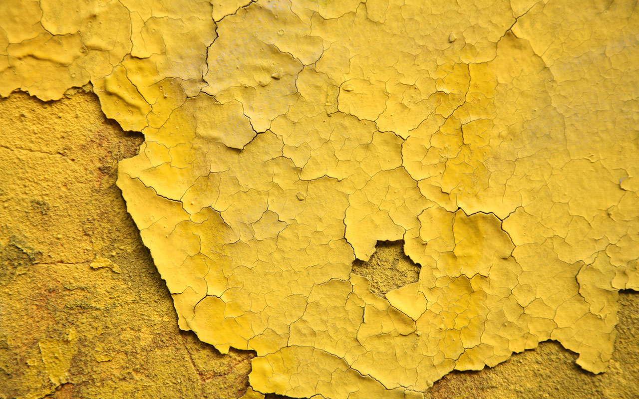 verstecktes Mikroplastik: Farben und Lacke
