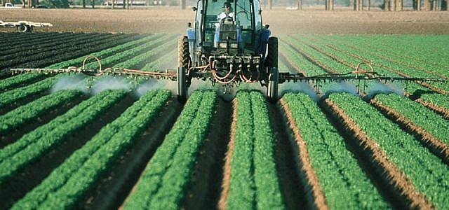 Viel ausgebrachte Pestizide sind Herbizide, Fungizide und Insektizide.