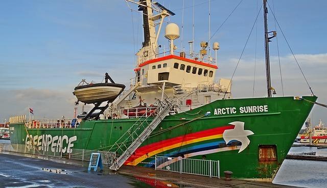 Auch bei Greenpeace engagieren sich viele Ehrenamtliche